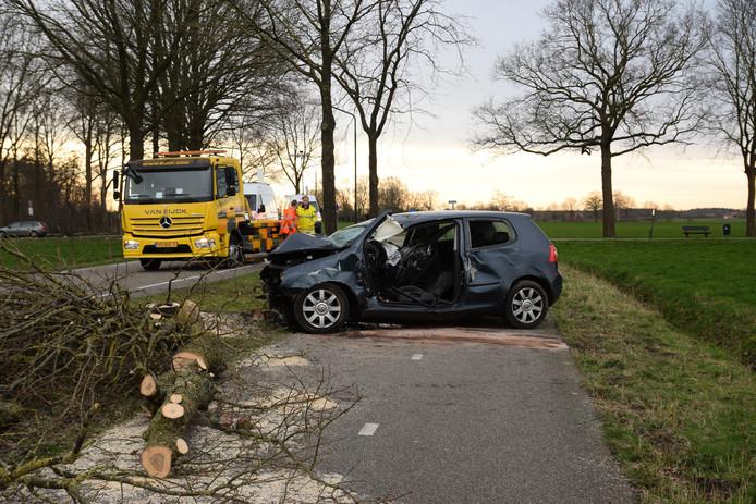 De bestuurder botste aan de Goirlesedijk in Hilvarenbeek tegen een boom.