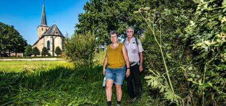 Dankzij wandelfanaten van 'Klompenpad B.V.' telt Voorst nu zéven Klompenpaden