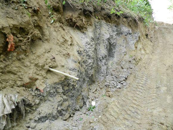 Het stort van Eternit aan de Bosstraat.