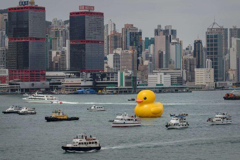 De gele eend in Hong Kong Beeld anp