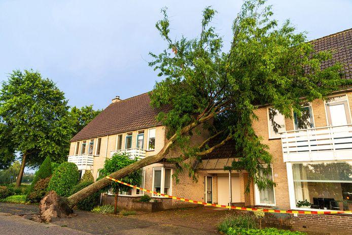 Boom op huizen gevallen in Oosterhout.