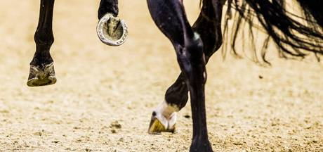 Eper Paarden4Daagse behoudt sponsor