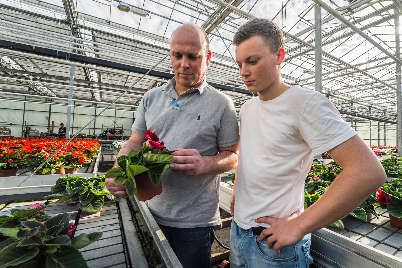 Van Dijk Potplanten raakt veel bloemen niet kwijt door de corona-maatregelen. Links eigenaar Jaco van Dijk, naast hem zoon Bas.