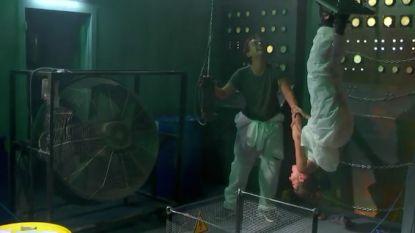 """Olga Leyers beleeft de schrik van haar leven in 'De Code Van Coppens': """"Ik ga vallen!"""""""