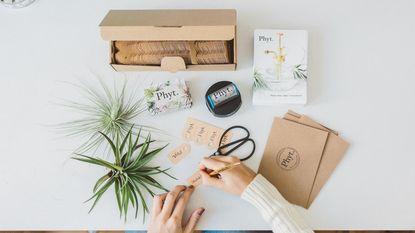 NINA tipt: online plantenwalhalla Phyt is jarig en wij mogen meevieren