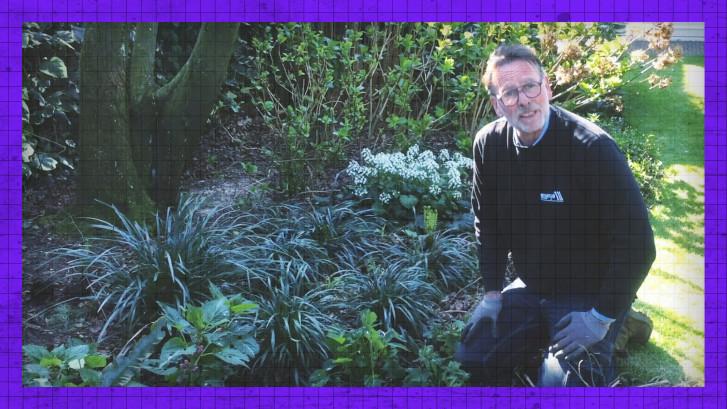 Met deze tip kun je je tuin binnen no time opknappen