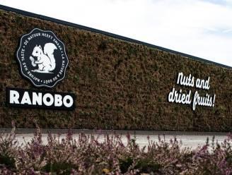 Groene zakjes, groene gevel: Ranobo kiest voor Kempense natuurmuur