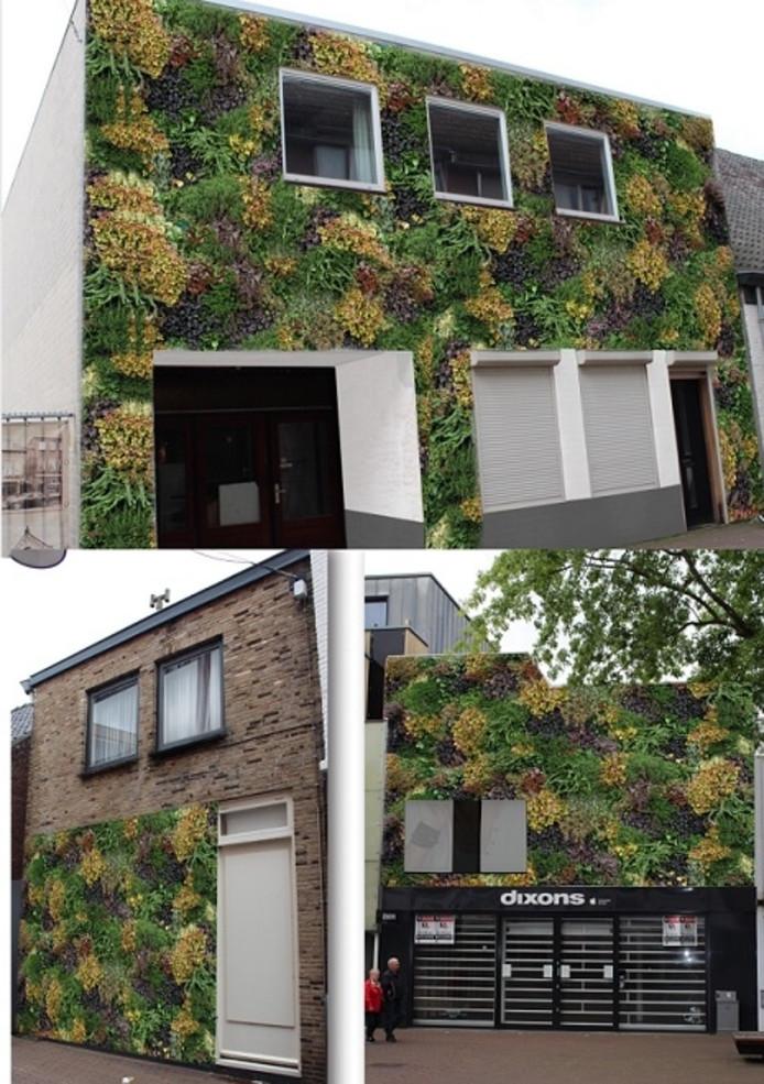 Drie voorbeelden van mogelijke verticale tuinen in Oss, gegeven door het centrummanagement Oss.