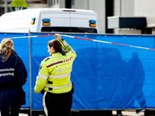 Moordenaar broer kroongetuige handelde 'in een roes'