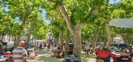 De wondere wereld van de vlooienmarkten in Zuid-Frankrijk