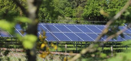 Haaksbergen zet in op zonne-energie met 50 hectare zonnevelden in landelijk gebied