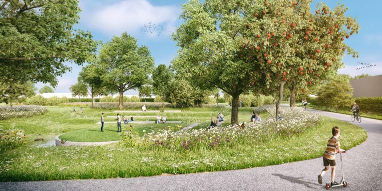 Het Roobaertpark krijgt het grootste park van Roeselare, met een avonturenweide, een plukakker, een ligweide en een amfitheater.