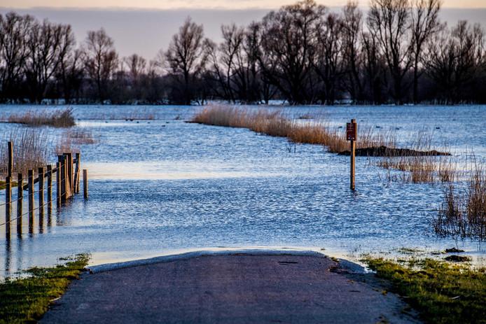De weilanden in de omgeving van Poederoijen zijn volgestroomd met het stijgende water van Maas en Waal.