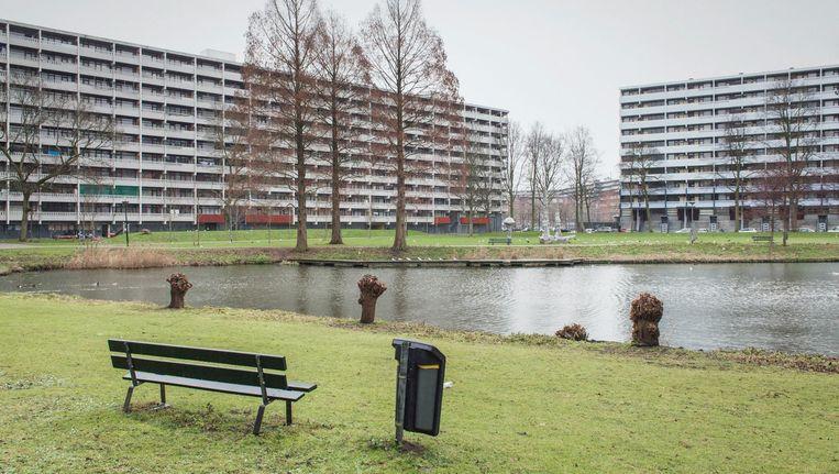 Het parkje tussen Geldershoofd en Gravestein moet volgens buurtbewoners net als de flats opgeknapt worden. Beeld Maarten Boswijk
