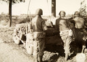 Jeeps van de Timberwolves op de Ettenseweg in Rijsbergen tijdens de bevrijding 75 jaar geleden
