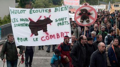 Franse overheid wil beren uitzetten in Pyreneeën: 1.200 betogers zeggen neen