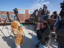 Jubileumeditie najaarstelling vogeltrek, vier telposten in Zeeuws-Vlaanderen