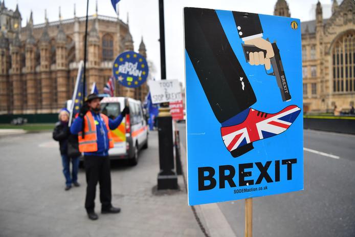 De protesten tegen de brexit bij de Britse regeringsgebouwen in Londen houden aan.