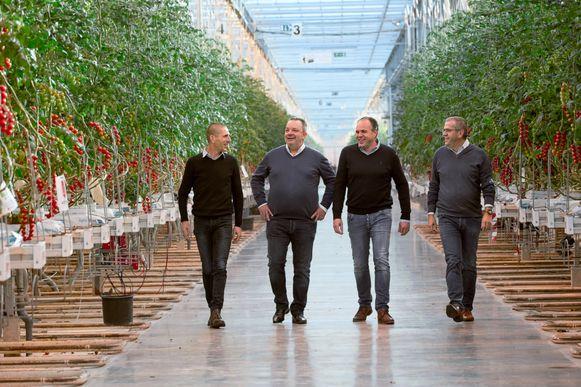 De zaakvoerders van Den Berk Délice tussen de tomaten.