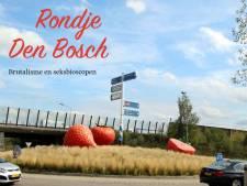 Ook rondje Den Bosch staat in de treurige reisgids: 'Dat zal niet iedereen even logisch in de oren klinken'