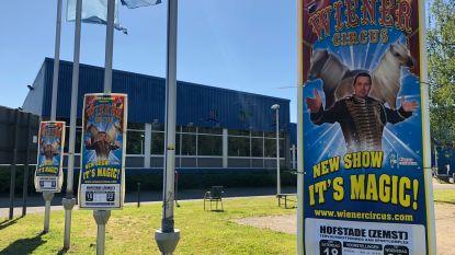 Wiener Circus vindt noodlocatie in Hofstade