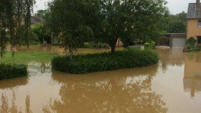 Waterellende houdt niet op: straten en huizen overstroomd in Diest