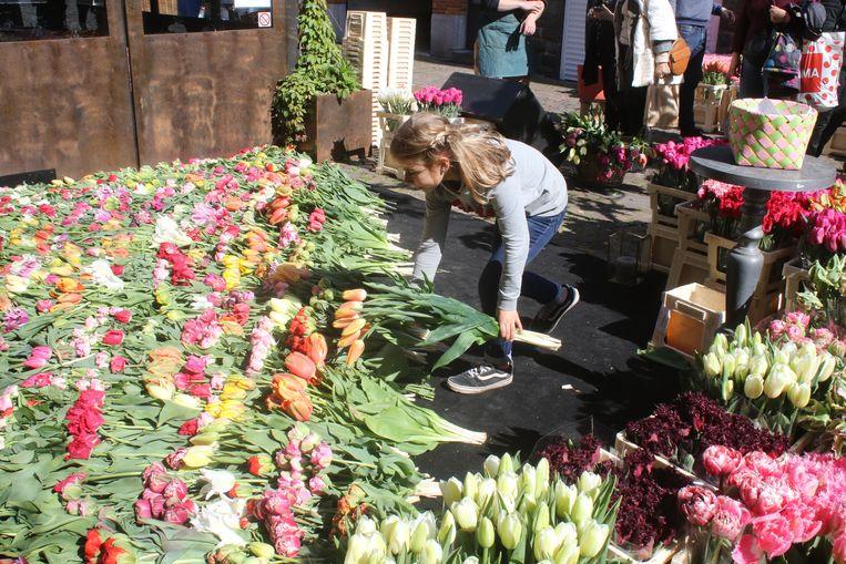 Warm bloementapijt klaagt het geweld van de voorbije weken aan