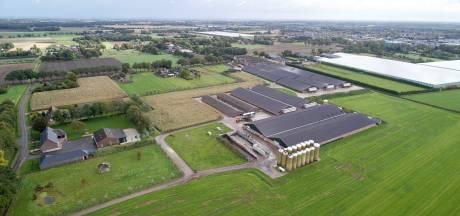 Brabantse boeren stoppen steeds sneller, ZLTO maakt zich grote zorgen