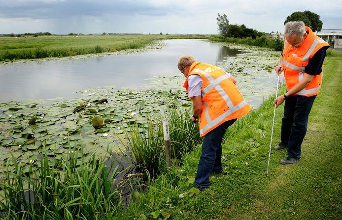 Dijkbeheerders gaan in de maand oktober dijken in het gehele rivierengebied controleren. Foto ter illustratie.