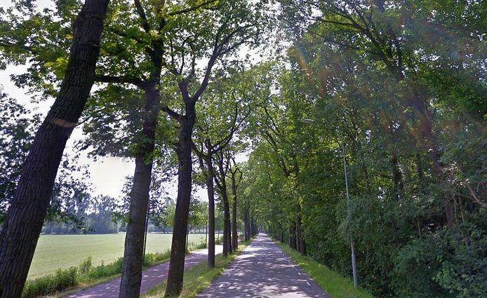 De Oirschotseweg in Boxtel.