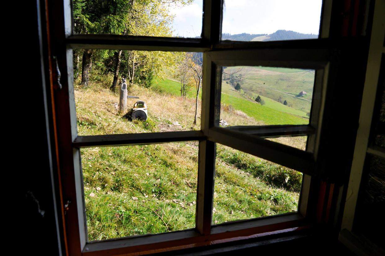 Het  uitzicht van de filosoof Martin Heidegger aan zijn bureau in zijn hutje in het Zwarte Woud.
