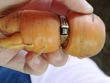 Verlovingsring na 13 jaar teruggevonden rondom een wortel