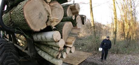 Maandag start bomenkap Anna's Hoeve