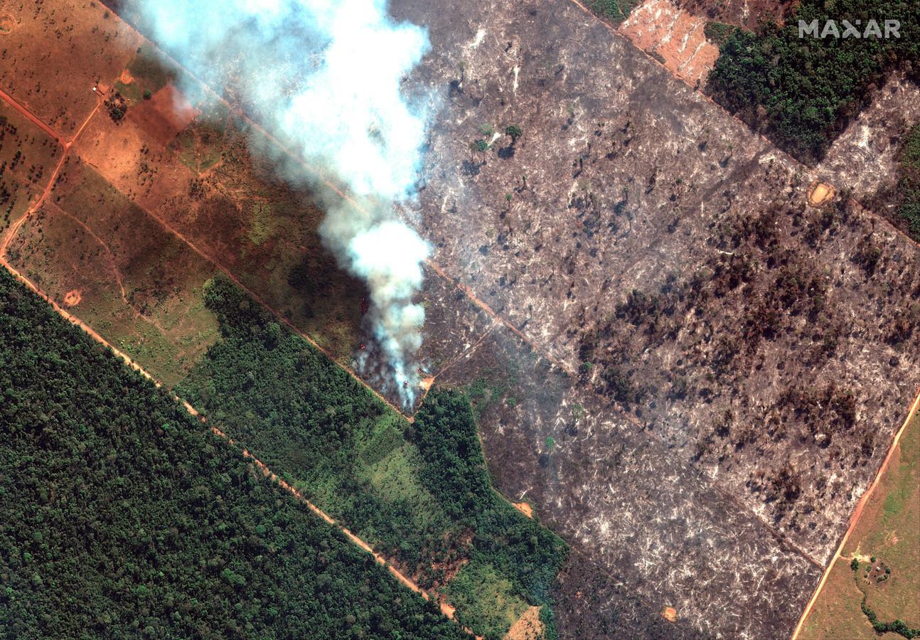 Incendie dans l'État de Rondonia