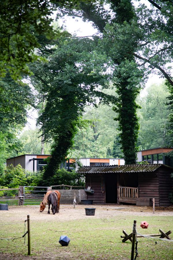 Het perceel aan de Bosweg ligt op een van de mooiste plekken van Nijmegen.