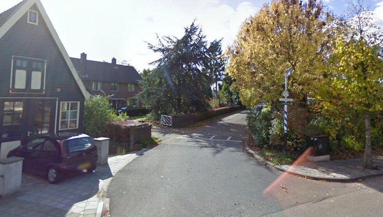 Het begin van de Lingedijk in Tricht Beeld Google Streetview