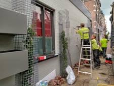 Houtstraat Oss krijgt eigen 'verticale' kruidentuin