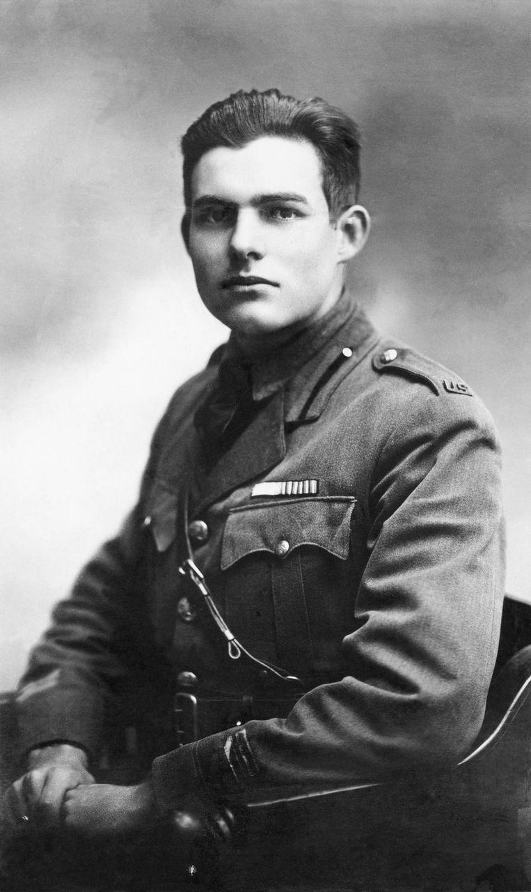 Ernest Hemingway Beeld