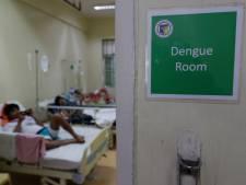 'Wees alert op dengue op vakantie in Azië'