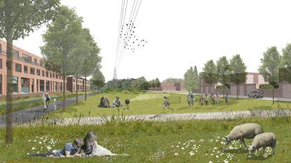 Stad lanceert digitale wandeling over toekomstig Heirbrugpark