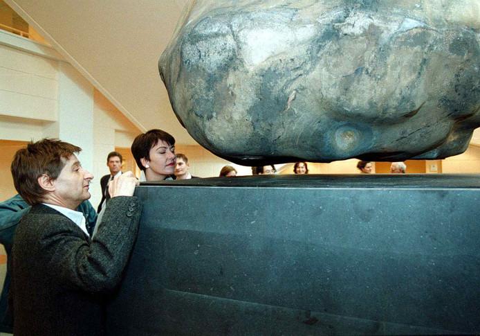De zwevende steen van  Wim T. Schippers.