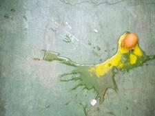 Eiergooiende jongeren mishandeld met waterpas in Apeldoorn