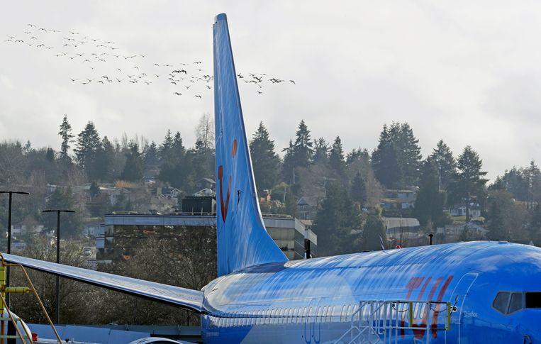 Een Boeing 737 MAX 8 van reisorganisatie TUI.  Beeld AP