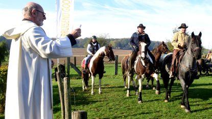 Pater Frits wijdt tientallen paarden