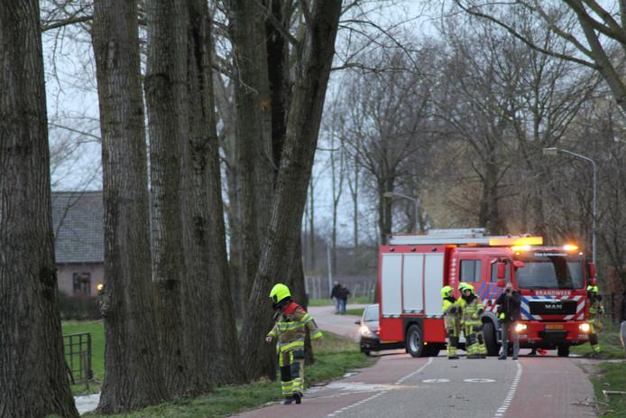 Een deel van Wadenoijen zit zonder water. Een boom aan de Bommelweg in Wadenoijen is door storm Dennis om gaan hellen en de wortels beschadigden daardoor een waterleiding.