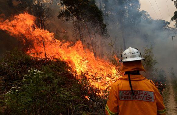 Een brandweerman bestrijdt het vuur op Gospers Mountain in Colo Heights, New South Wales.