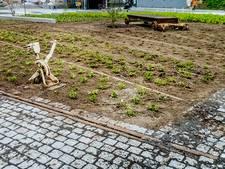 Waarom het nieuwe Tilburgse stationsplein een best wel toffe plek wordt...