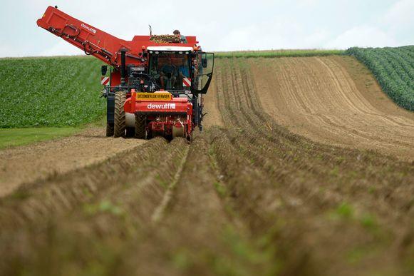 Wil jij een stem zijn voor de landbouw in Kaprijke?