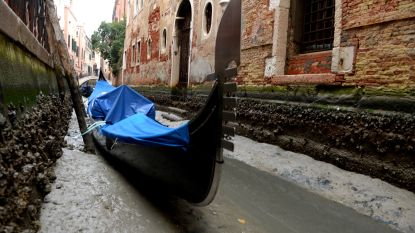 Venetië staat droog: super-blauwe-bloedmaan én weinig regen veranderen romantische kanalen in modderpoel