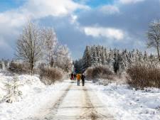 Plusieurs zones forestières d'Ardenne fermées en raison de l'accumulation de neige